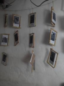 Fotos de los que han participado en Sunseed