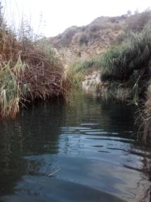 Río Aguas 2