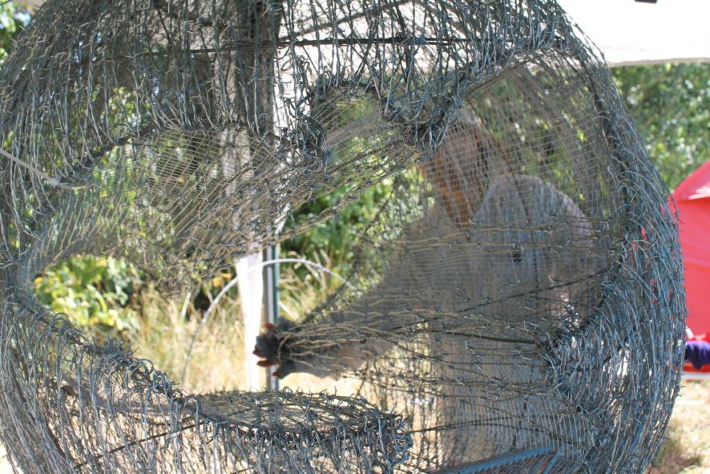 La artista iraní trabajando en su escultura de alambre de espino, atravesada por una paloma de la paz